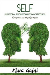 Self in Integral Evolutionary Mysticism